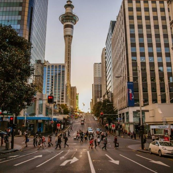 Auckland's city centre skyline, looking west with views of the Sky Tower, ANZ Centre, Victoria Parks, the harbour and bridge. Image: Wayne Boardroom