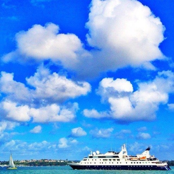 Cruise ship in Waitamata Harbour in Auckland City Centre amongst yachts and boats under blue sky