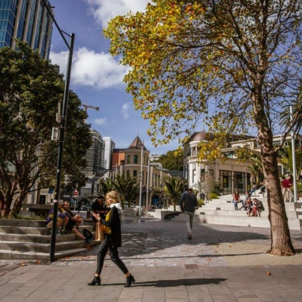 Freyberg Square in the sunshine with people sitting in the shade and pedestrians with shopping, heritage buildings in view surrounded by trees and greenery and Ellen Melville Centre