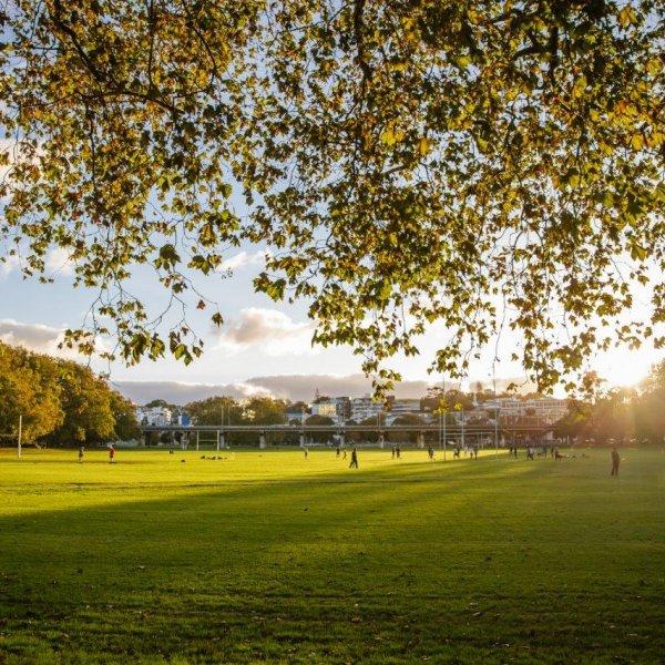 Looking west across Victoria Park in Auckland's city centre. Image: Sacha Stejko.
