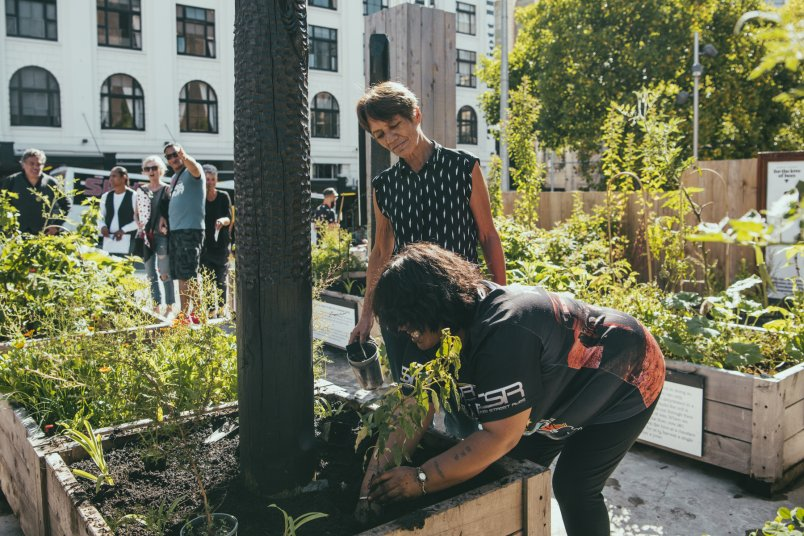 People gardening in the community Rongoa garden as part of the Griffiths Garden activation on Wellesley Street in Auckland's city centre. Image: Kate Van Der Drift Photography