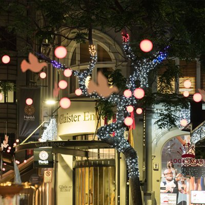 Christmas lights Vulcan Lane 2016. Image: Jeremy Toth